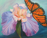 Monarch and Iris
