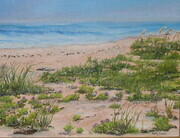 The Causeway Beach -Sold